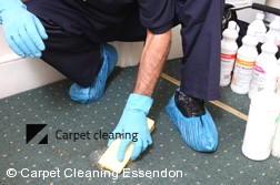 Carpet Cleaning Essendon 3040