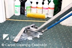 Professional Carpet Cleaners Essendon