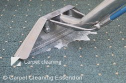 Rug Cleaning Essendon