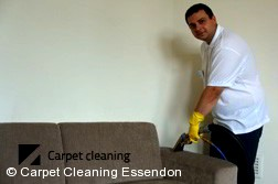 Sofa Cleaning Essendon 3040