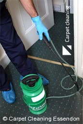 Essendon 3040 Deep Carpet Cleaning Services