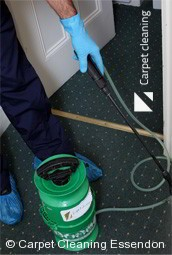 Professional Carpet Cleaners Essendon 3040