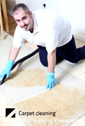 Essendon Professional Dry Carpet Cleaning