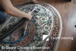 Rug Cleaning Services in Essendon