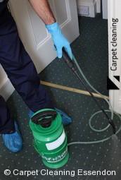 Essendon Professional Carpet Steam Cleaners 3040
